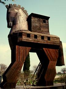 Robert Collins : Co-Chair